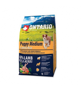 Superpremium Puppy Medium Cordero y Arroz (1)