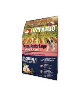 Superpremium Puppy Large Pollo y Patatas (1)