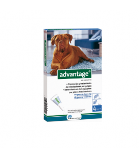 Advantage Pipette Antipulci Cane di +25Kg (6)