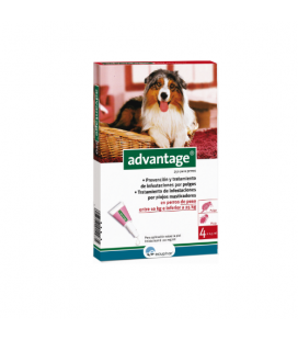 Advantage Pipette Antipulci Cane di 10-25Kg (6)