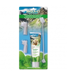 Arquivet Set Dental menta