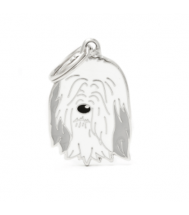 Bearded Collie (1)