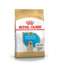 Royal Canin-Labrador Retriever Cachorro (2)