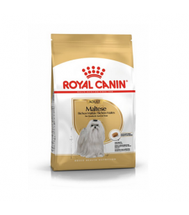 Royal Canin Bichón Maltese Adulto