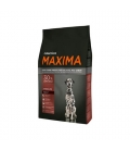 Maxima-Medium Adulto Razas Medianas (1)